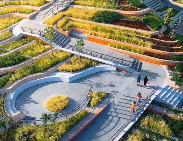 thammasat-urban-rooftop-farm-landprocess