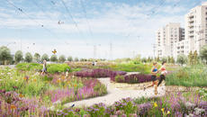 A BIODIVERSITY CORRIDOR FOR MONTRÉAL | civiliti, LAND Italia, Table Architecture, Biodiversité Conseil