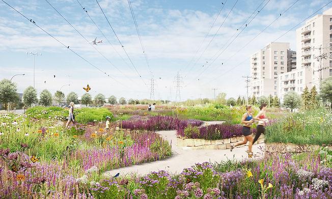 a-biodiversity-corridor-for-montréal