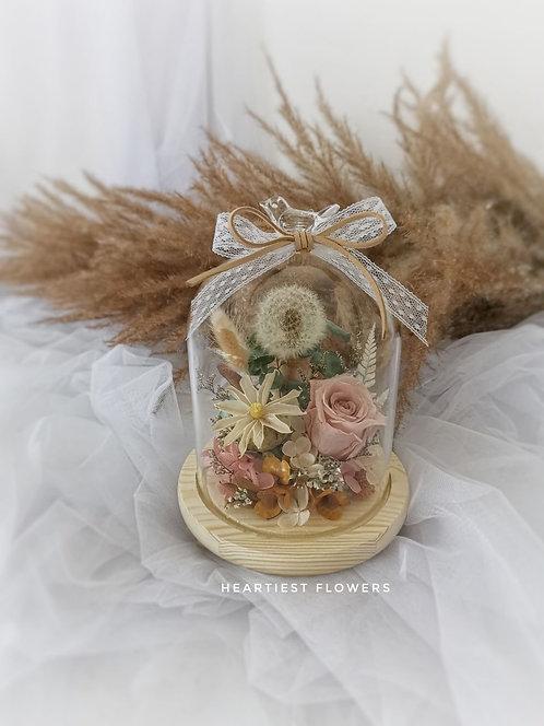 Preserved Natural Dandelion Series - Pigeon Jar