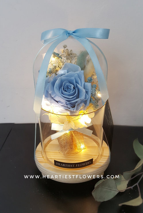 Preserved Bouquet in Jar - with Light