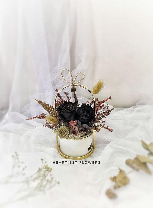 Scorpio Special - Preserved Black Roses Gold Handle Pot