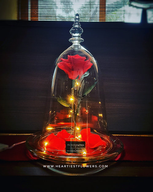 Bell Jar Enchanted Rose