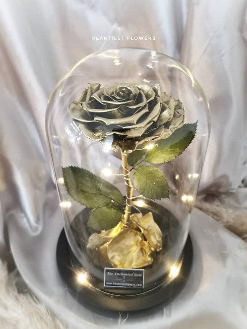 Golden Enchanted - Preserved Flower
