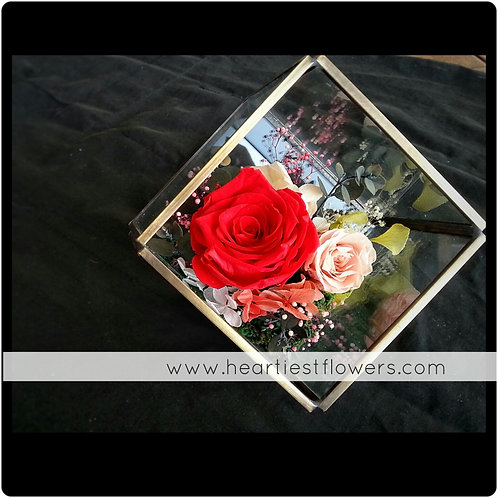 Metal & Glass Terrarium Preserved Flower