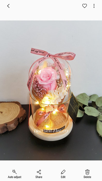 Preserved Bouquet in Jar with lights