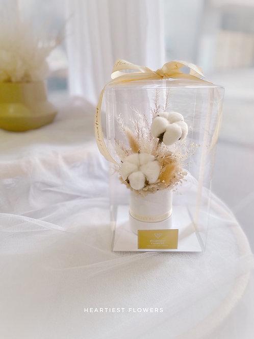 Luna Cotton - Dried Flower Box
