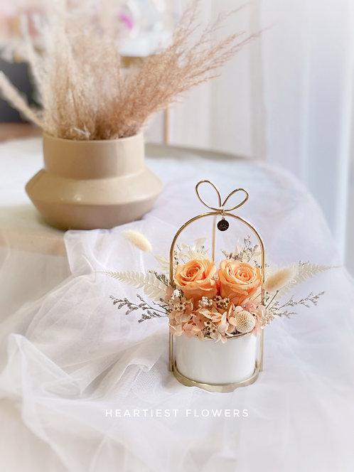 Leo Special - Preserved Orange Rose Gold Handle Pot