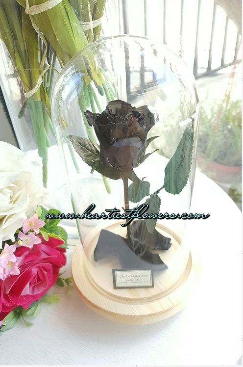 Black Enchanted Rose