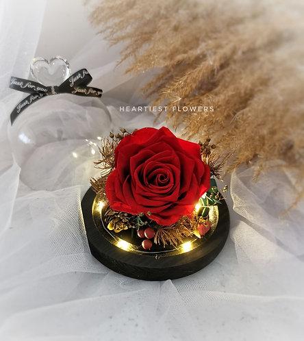 Christmas Special - Preserved Rose Heartshape Top Jar