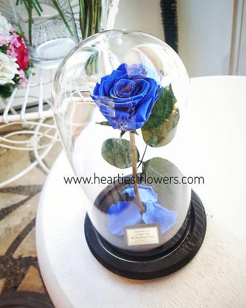The Enchanted Rose - Dark Blue