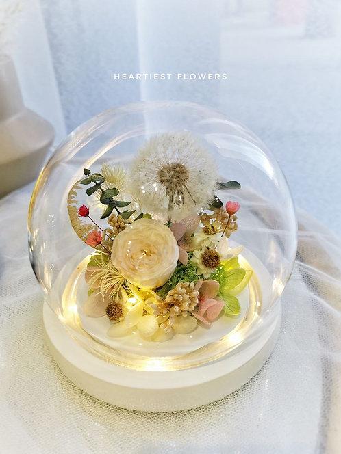 Preserved Natural Dandelion Series - Round Jar