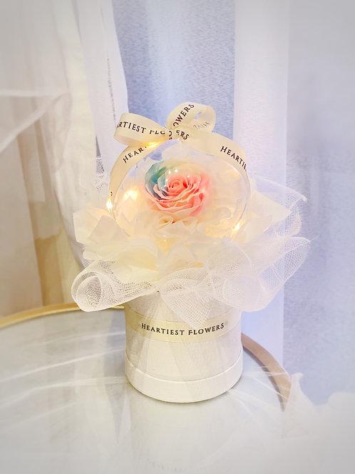 Magic of Rainbow - Rainbow Soap Rose Design