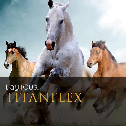 TITAN FLEX