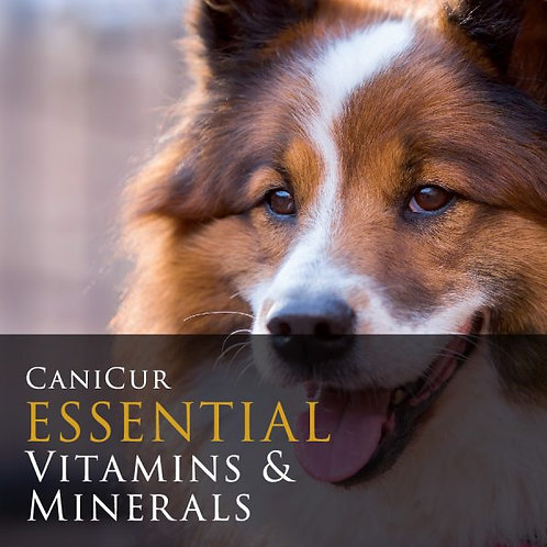Essential Vitamins & Minerals