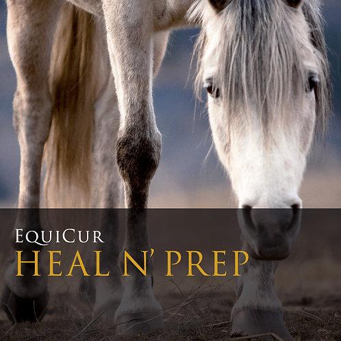 Heal n' Prep