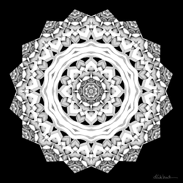 Dot Stars.jpg