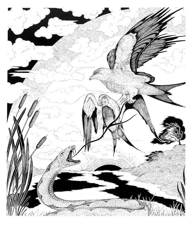 Snake Bird Violence.jpg
