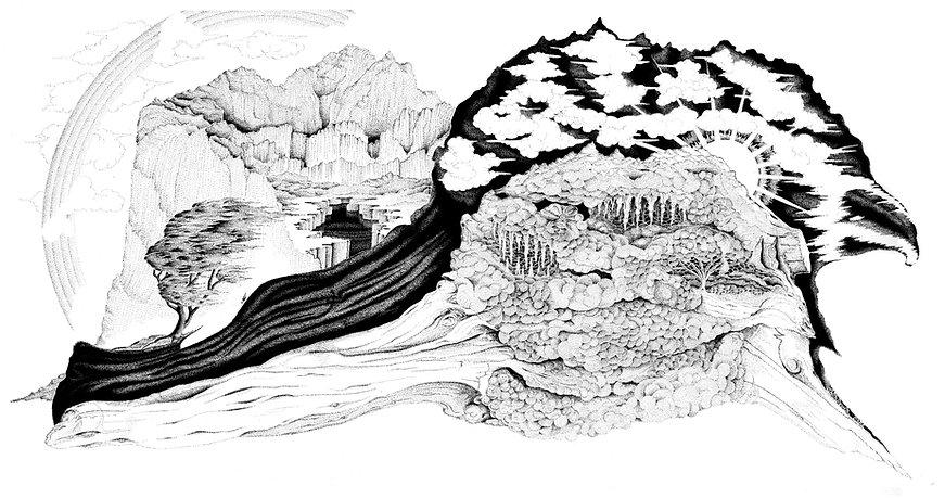 DriftwoodVisions2.jpg