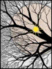 Sun Thru Trees2.jpg