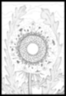 ProcreativeDandelion2.jpg