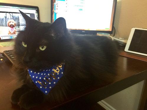 Cat Bandana With Foil Name