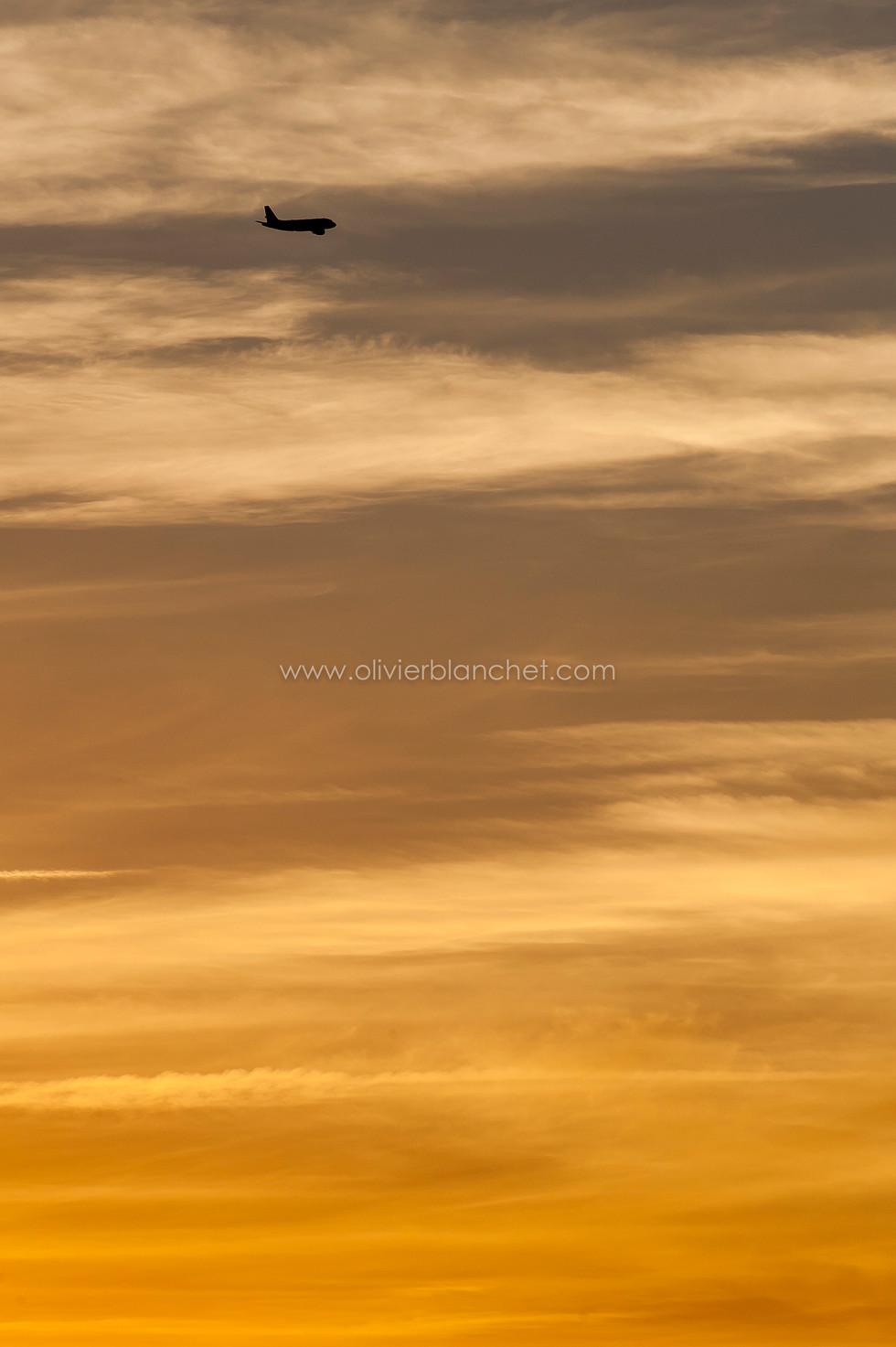 Vol de coucher de soleil