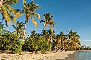 DESTINATION_MARTINIQUE_014.jpg