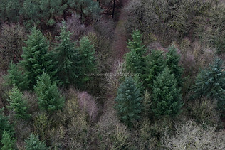 171226_HELICO_CAMPAGNE_041.jpg