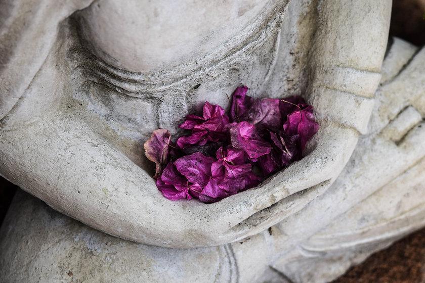 05_MeditationMindfulnessTherapy-chris-en