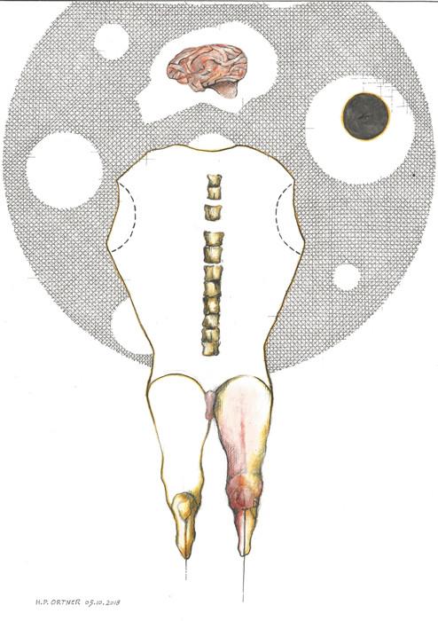 Hirnkastlflug