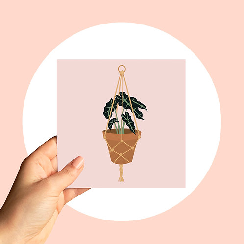 Card - Macrame Plant