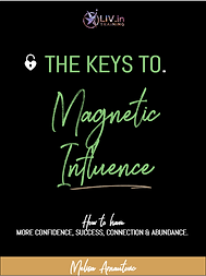 magnetic influence book thumbnail.png
