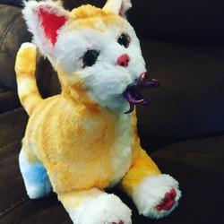 alien flerken cat