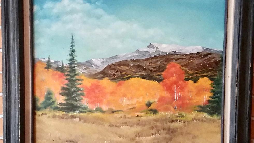 """Colorado Aspen Fire"""