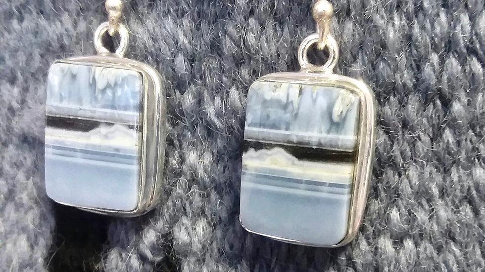 Owhee Opal Earrings