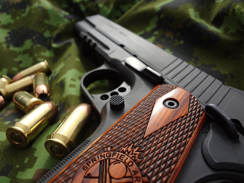Fundamentals of Handgun Marksmanship and Introduction to Firearms