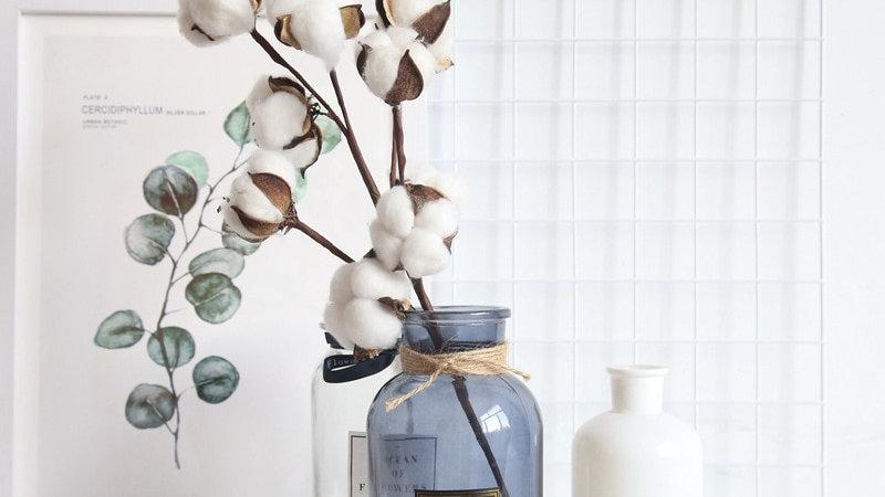 1 PCS  Naturally Dried  Cotton (10PCS) Flowers