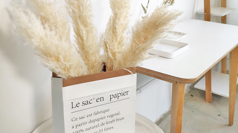 15 PCS Natural Dried Small Reed Pampas Grass