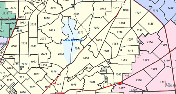 Outline of East Dallas precincts