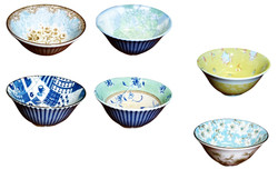 Japanese Donbuir Bowl