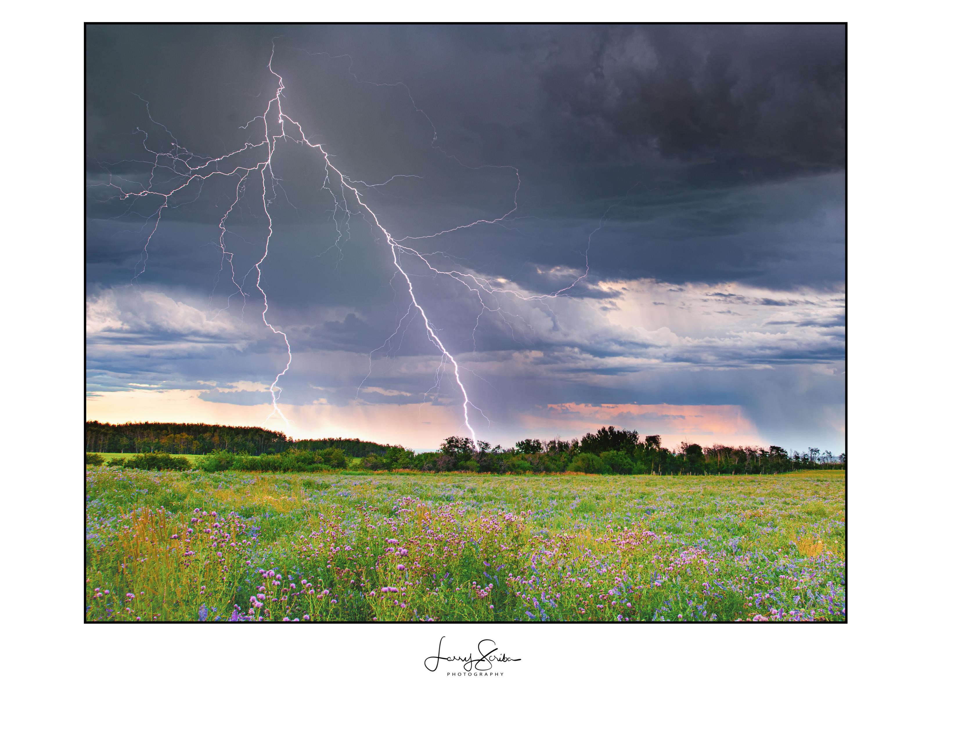 Webster Lightning Strike