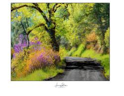 California Roads Painting