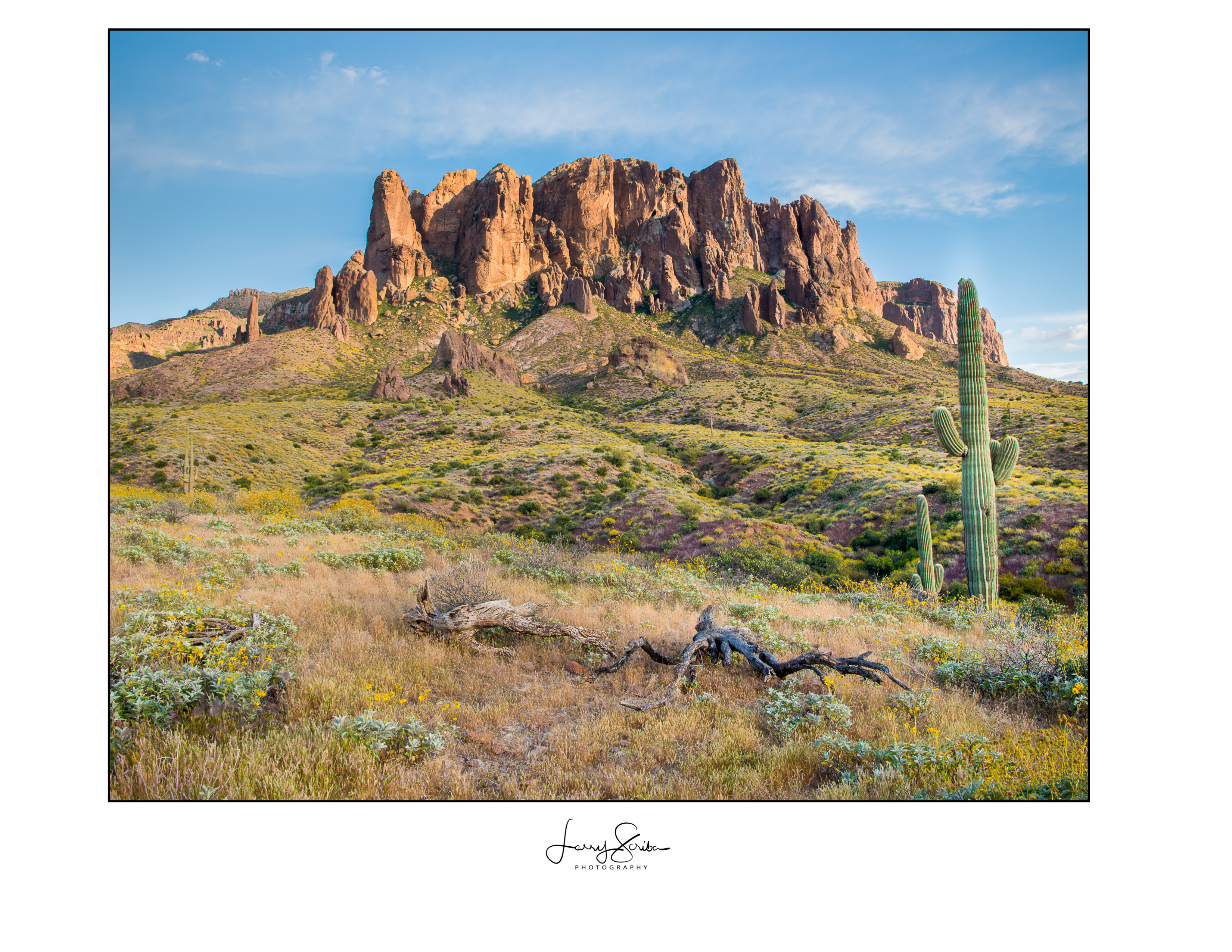 Superstition Mountain & Stumps