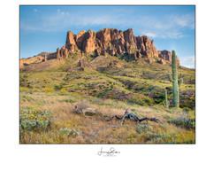 Superstition Mountain & Stumps