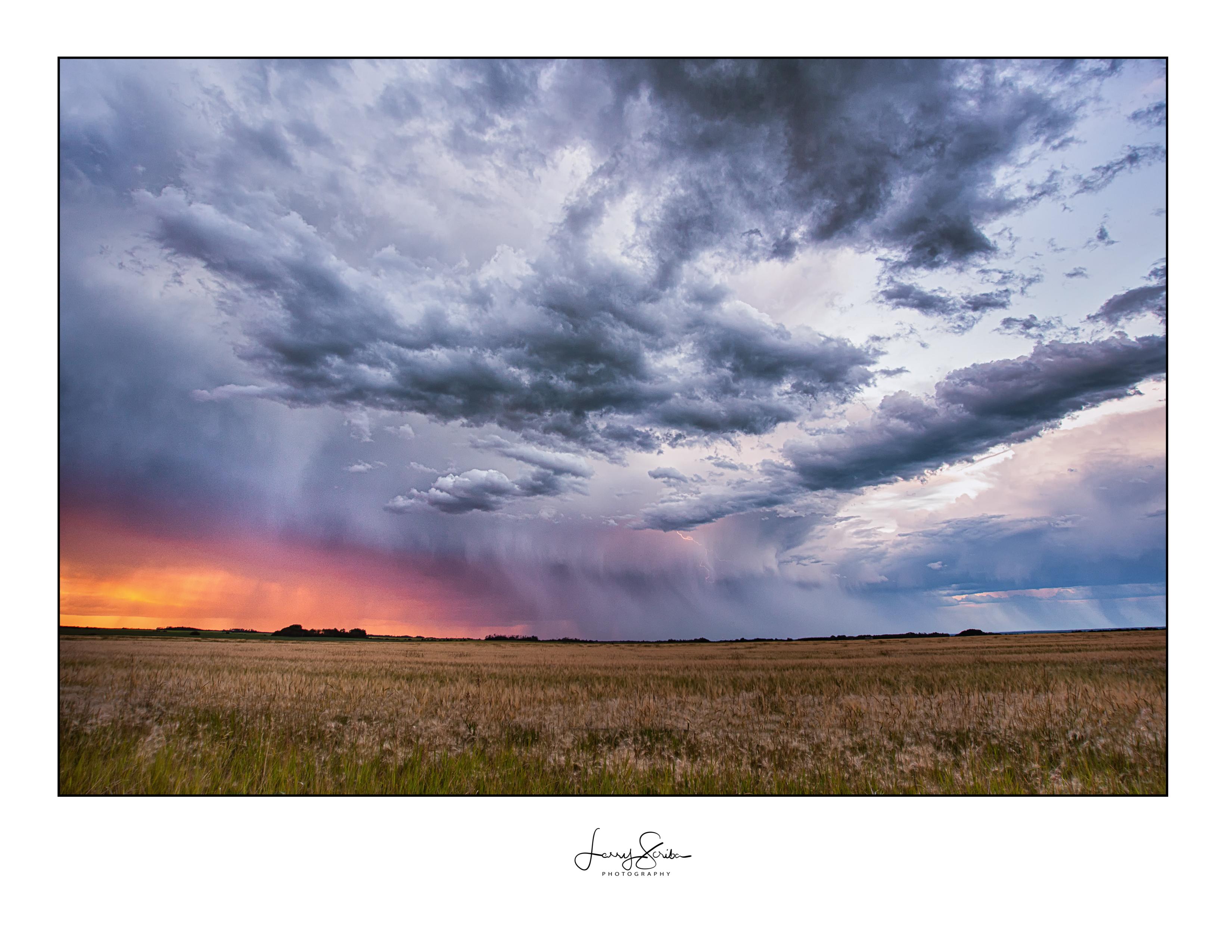Webster Sky