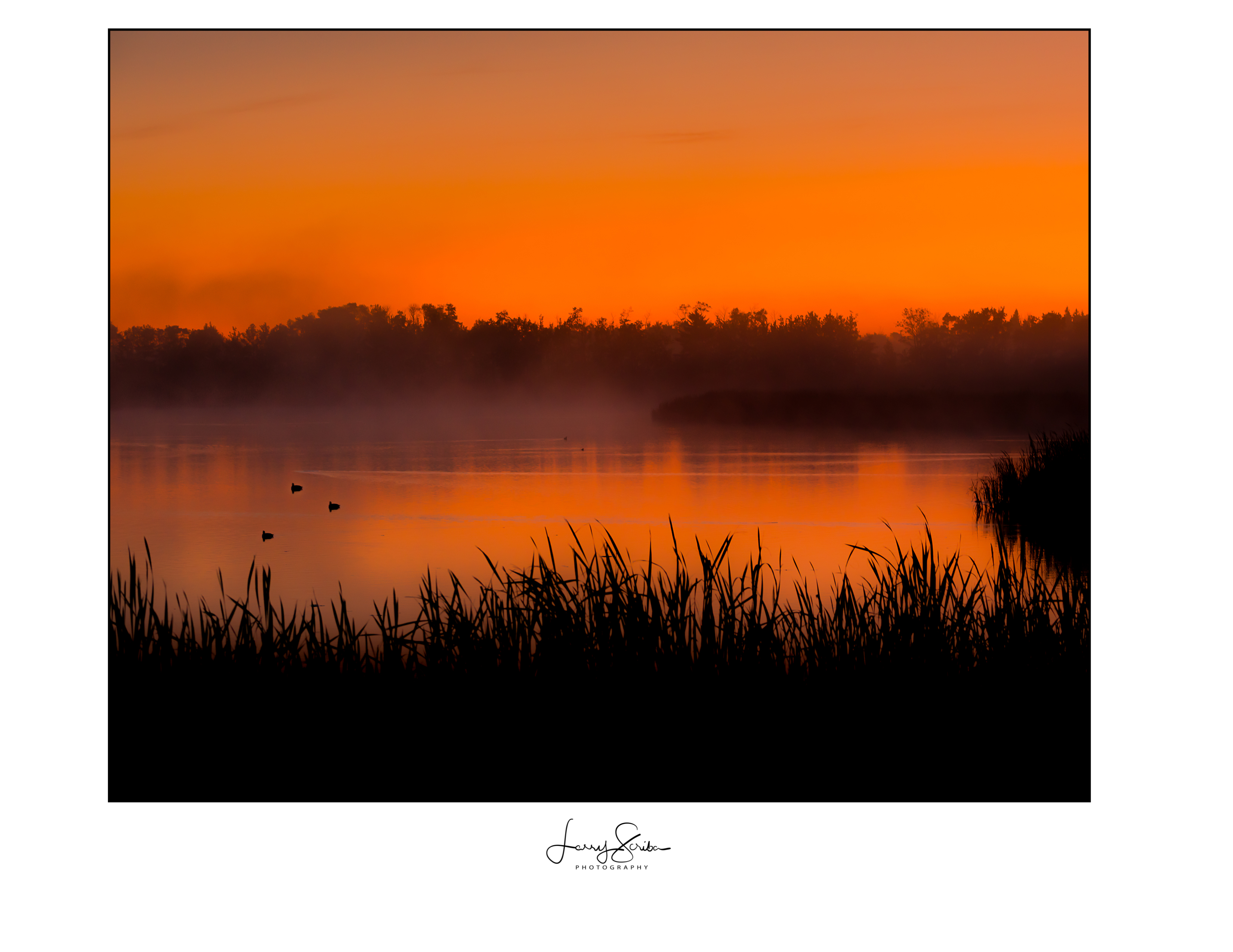 Sexsmith Duck Pond Sunrise