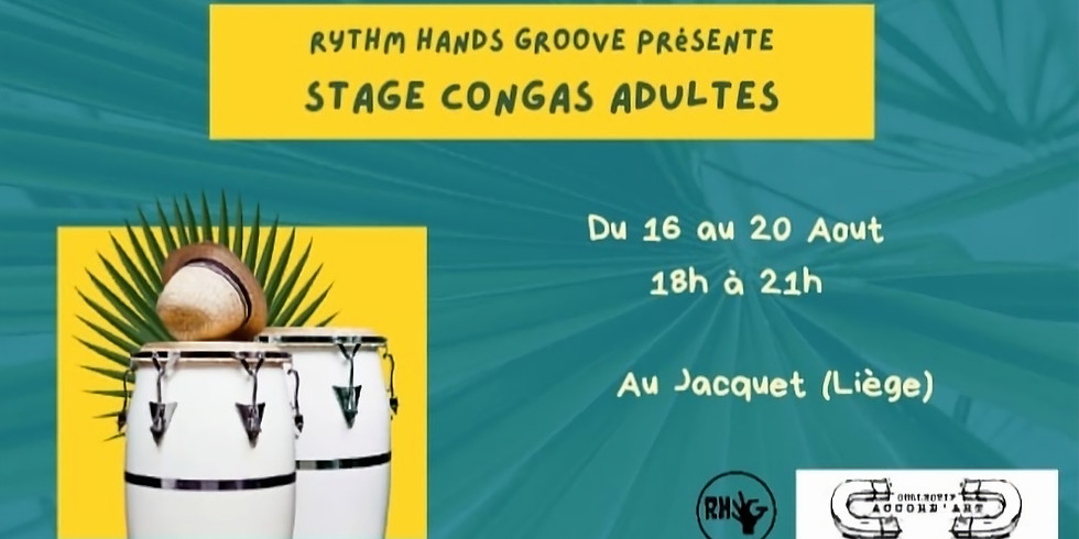 Stage congas adultes