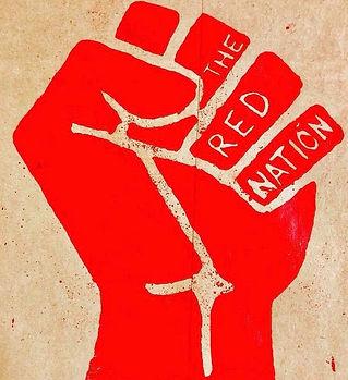 org_logo_RedNation.jpg