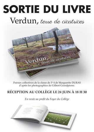 Verdun, terre de cicatrices